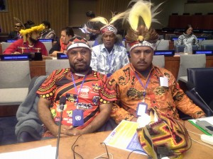 9479 996305287046159 927437077910357809 n 300x225 UNPFII 14th session: Statement by Akali Tange Association and endorsed by the Pacific Caucus